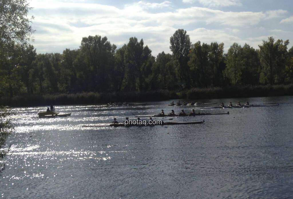 Rudern, Rennen, Alte Donau (28.09.2013)