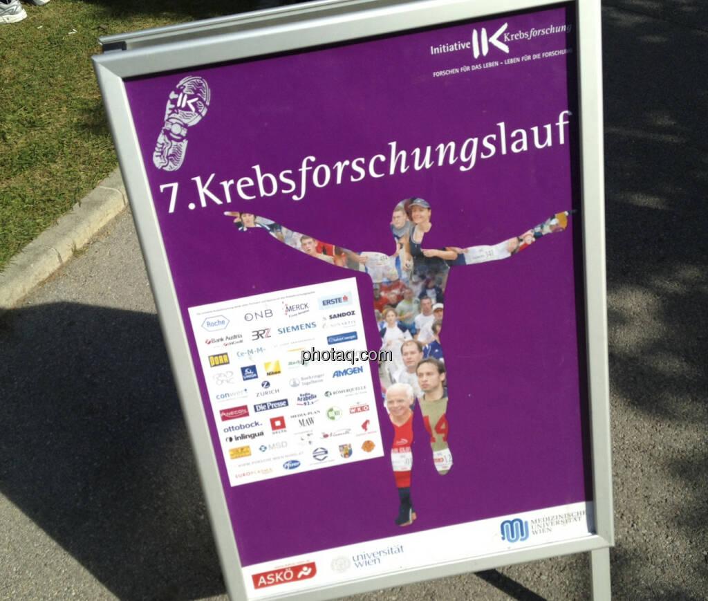 7. Krebsforschungslauf (05.10.2013)