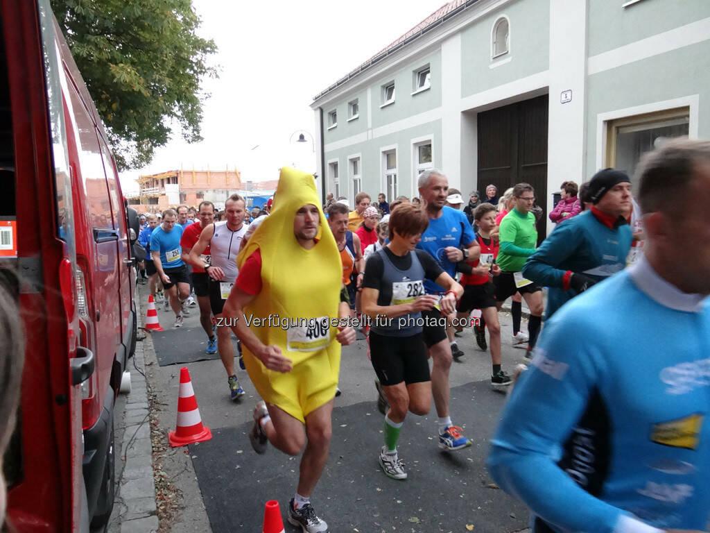 Bananenläufer, 8. Königstetter Herbstlauf 2013 (06.10.2013)