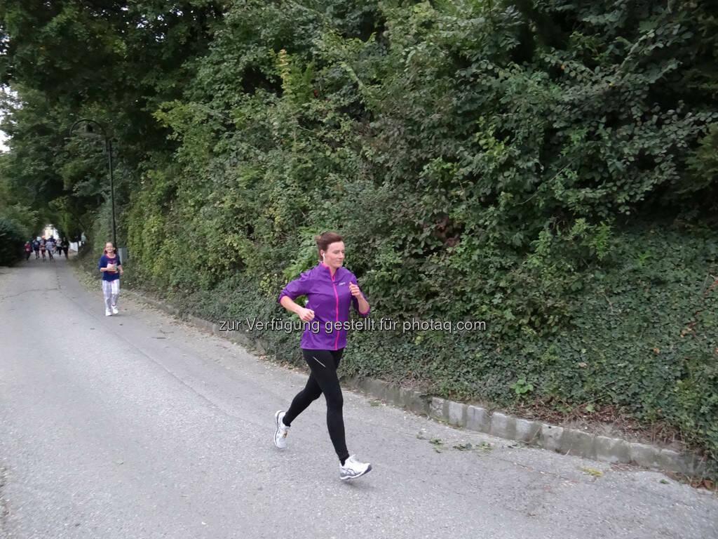 Martina Draper, 8. Königstetter Herbstlauf 2013 (06.10.2013)