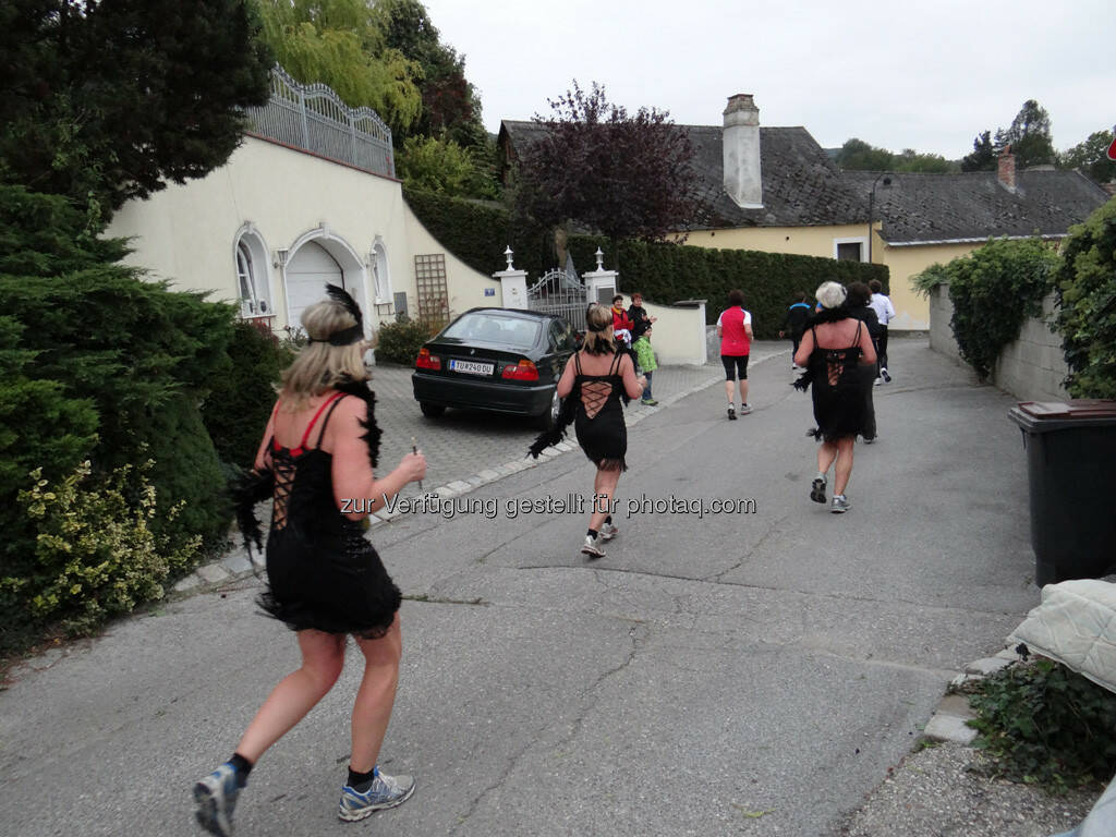 3 Damen in schwarzen Kleidern, 8. Königstetter Herbstlauf 2013 (06.10.2013)