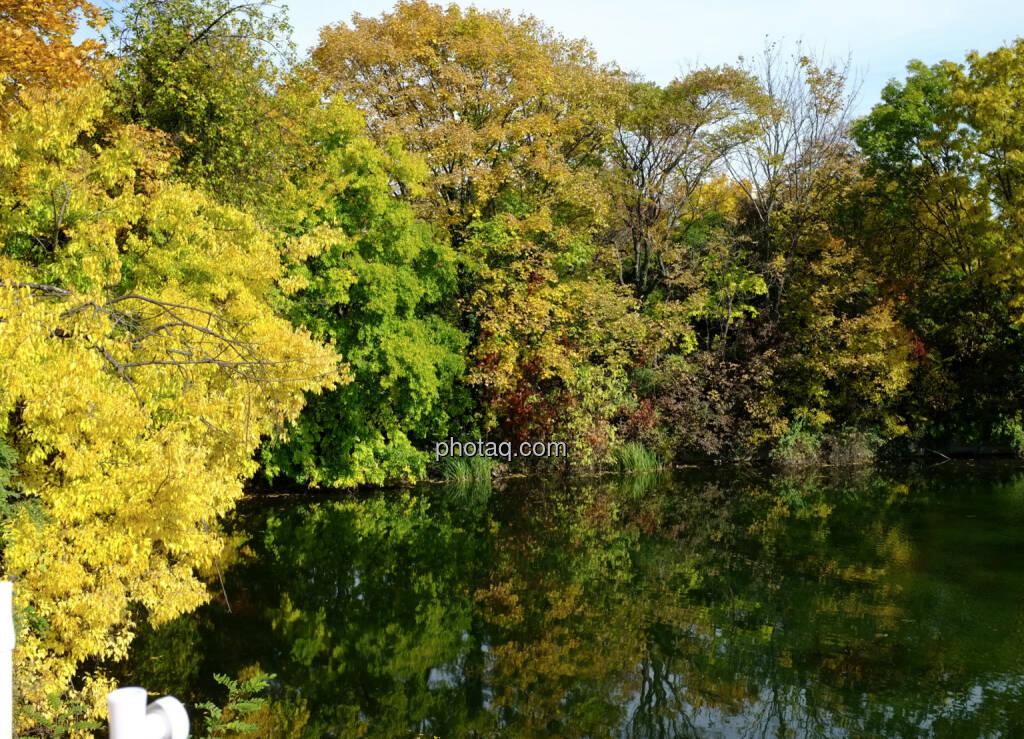 Wasser, Bäume, © Martina Draper / Diverse (16.10.2013)