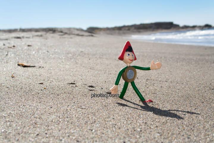 Sparefroh am Strand