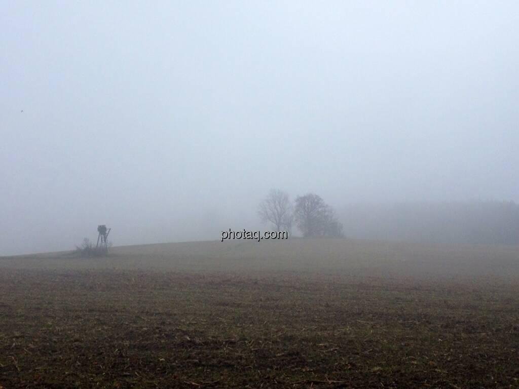Feld, Bäume, Nebel, © Martina Draper / Diverse (02.11.2013)