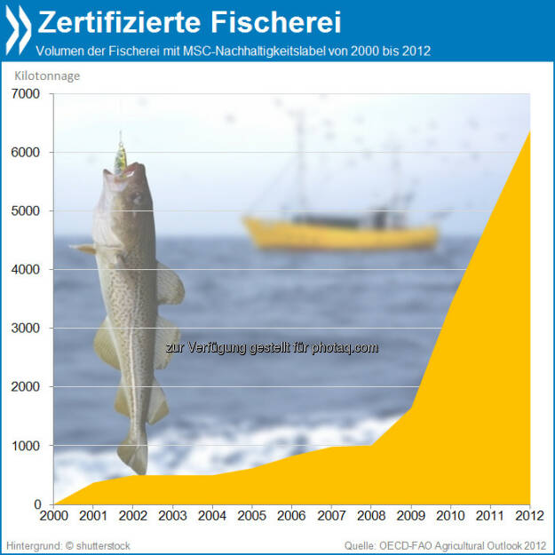 Fisch en Vogue: Seit 2008 steigt die Zahl der Fischprodukte mit Nachhaltigkeitslabel kontinuierlich an. Insgesamt wuchs das nachhaltige Fisch-Volumen zwischen den Jahren 2008 und 2012 von gut 1000 auf über 6000 Kilotonnagen.  Mehr unter http://bit.ly/1ag1U0S (OECD-FAO Agricultural Outlook 2012, S.182), © OECD (04.11.2013)