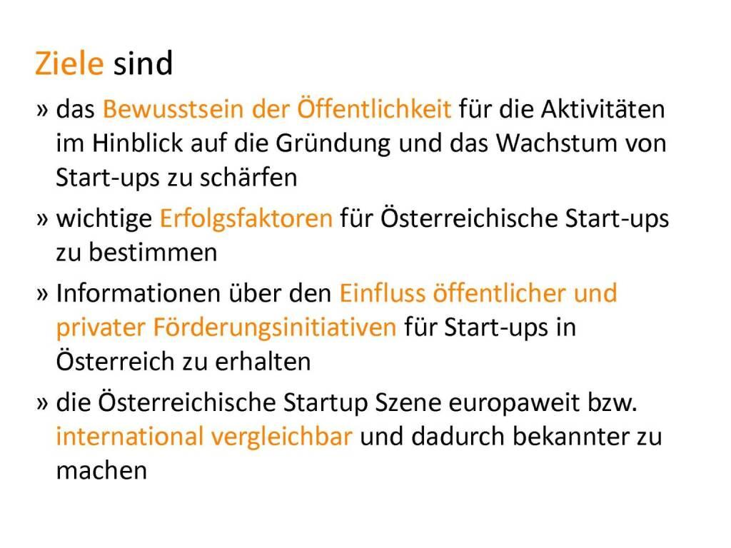 Austrian Startup Report 2013 - Ziele, © mit freundlicher Genehmigung von Speed Invest (26.11.2013)