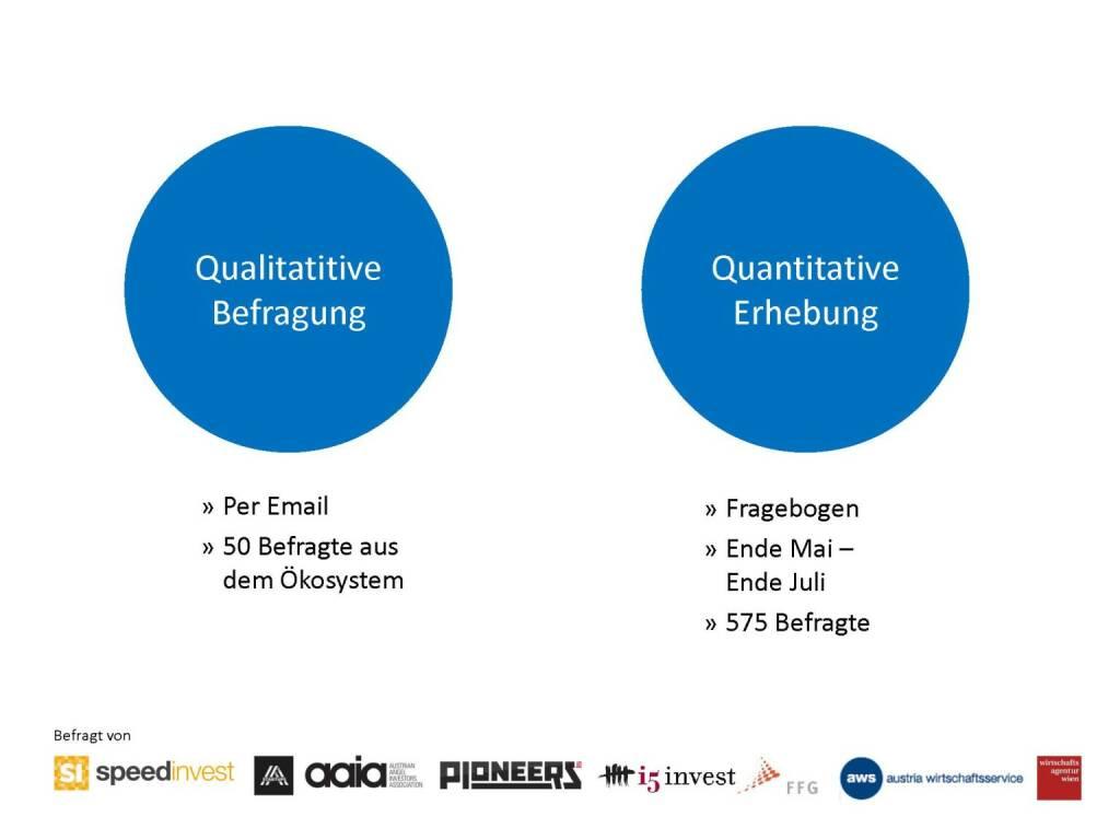 Austrian Startup Report 2013: Die Variante, © mit freundlicher Genehmigung von Speed Invest (26.11.2013)