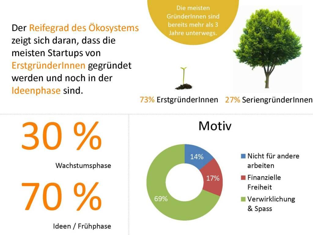 Austrian Startup Report 2013 - Reifegrad, © mit freundlicher Genehmigung von Speed Invest (26.11.2013)