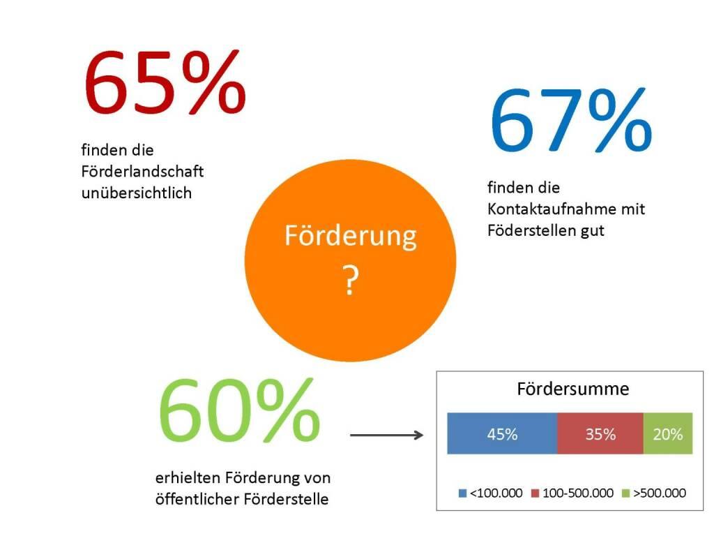 Austrian Startup Report 2013 - Förderlandschaft, © mit freundlicher Genehmigung von Speed Invest (26.11.2013)