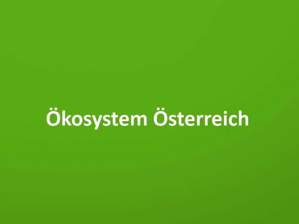 Austrian Startup Report 2013 - Ökosystem Österreich, © mit freundlicher Genehmigung von Speed Invest (26.11.2013)