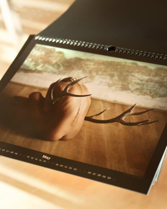 Flora P.: Kalender 2014 Selfs