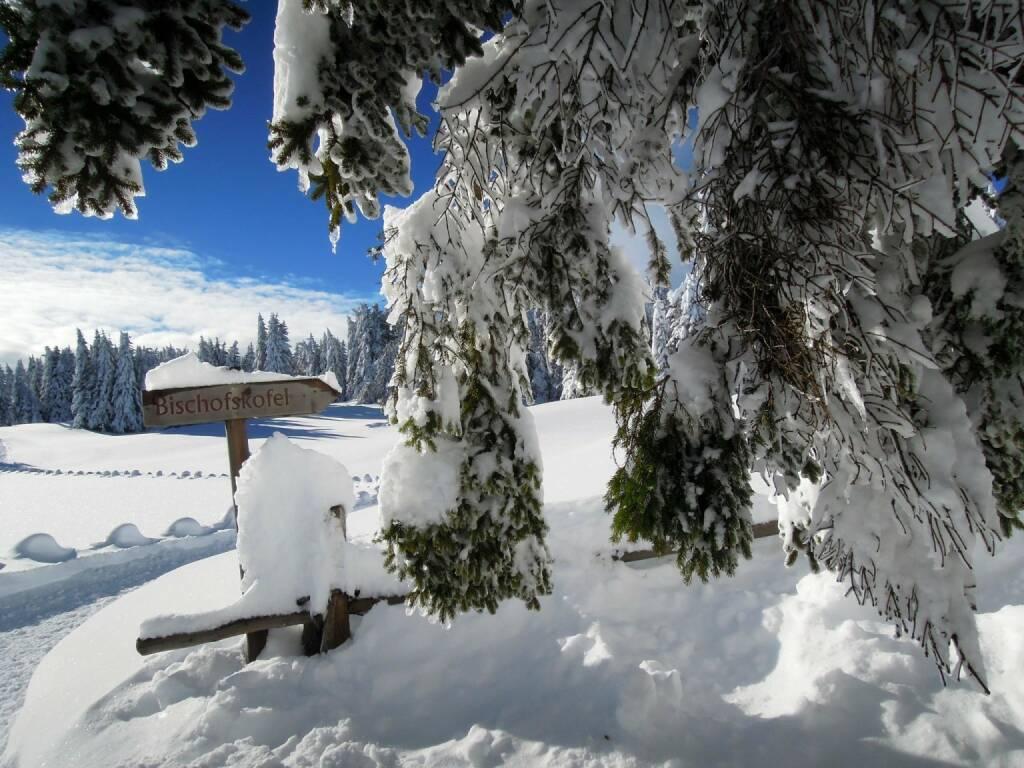 Bischofskofel, Vigljoch, Südtirol, © Peter Sitte (27.12.2013)