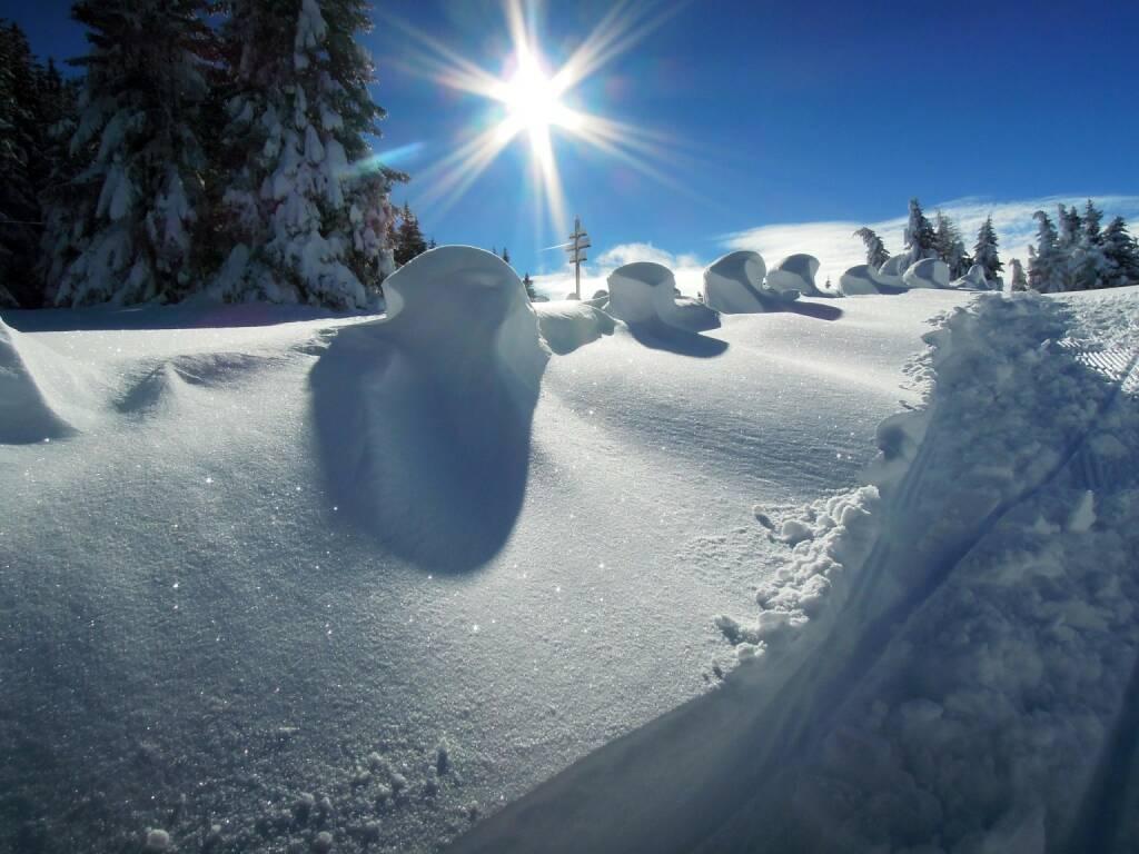 Schnee, Sonne, Vigljoch, Südtirol, © Peter Sitte (27.12.2013)