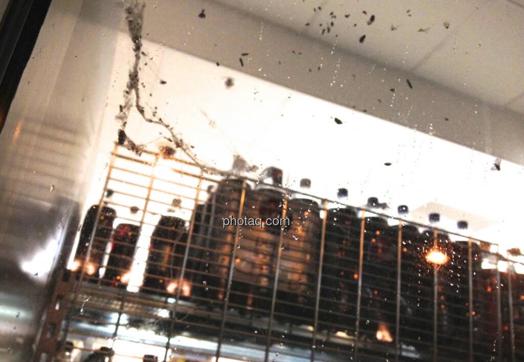 Ein paar Fliegen in der Fensterscheibe vom Billa (05.02.2014)