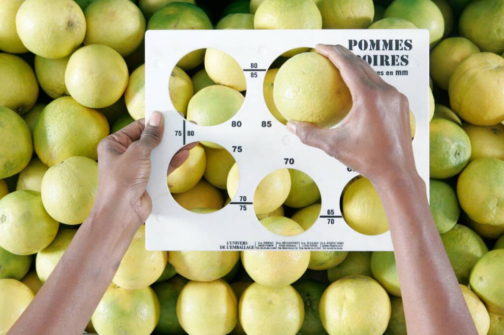 Größensortierung von Äpfeln, Metro Group, © Metro AG (Homepage) (15.02.2014)