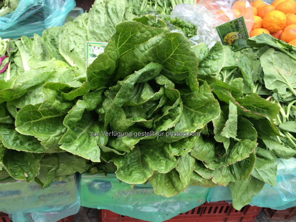 Salat, © Martina Draper (15.04.2014)