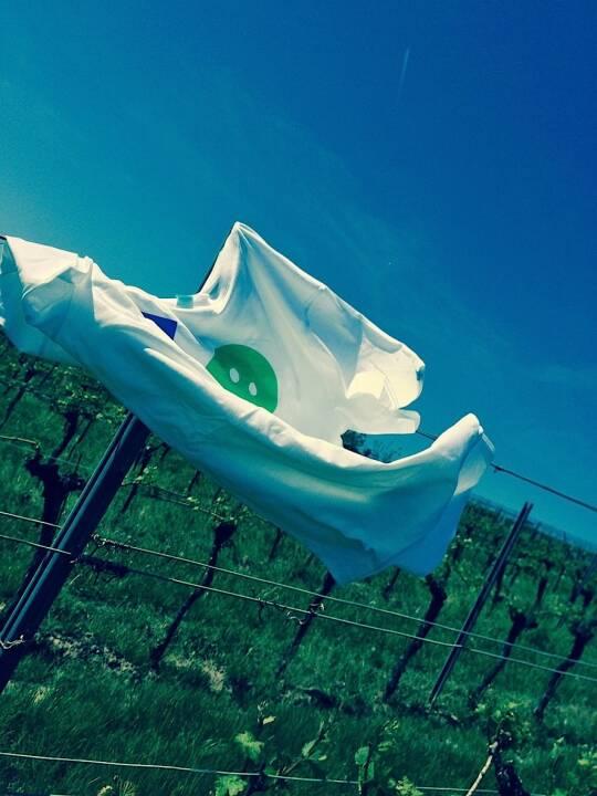 Weingarten Smeil Shirt