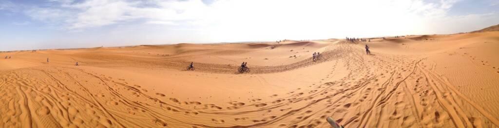 Wüste (03.05.2014)