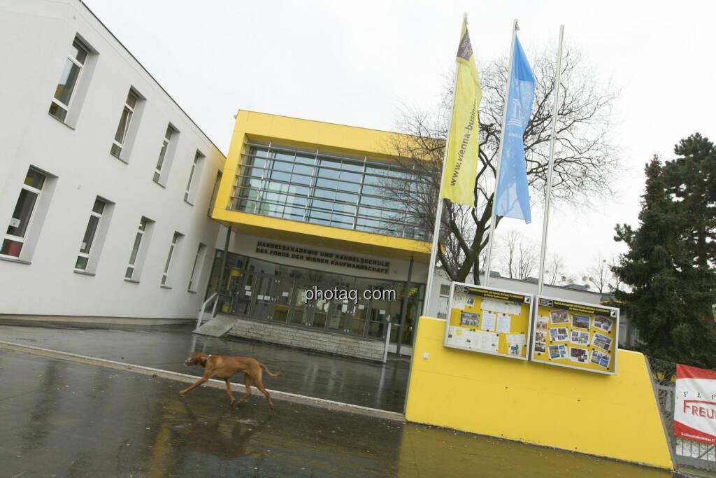 Vienna Business School, 1210 Wien, © Martina Draper/finanzmarktfoto.at (21.12.2012)