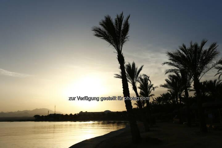 Palm Royal Hotel Soma Bay beach, Red Sea Kitesurf World Cup (28. Mai bis zum 1. Juni ) in Soma Bay (Bild: Hoch Zwei / Juergen Tap)