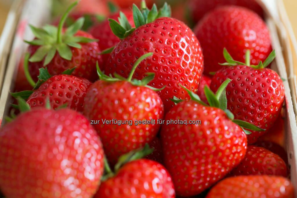 Erdbeeren, © Martina Draper (31.05.2014)