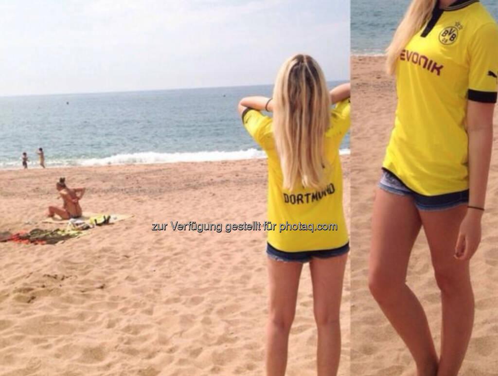 Borussia Dortmund Evonik (28.06.2014)