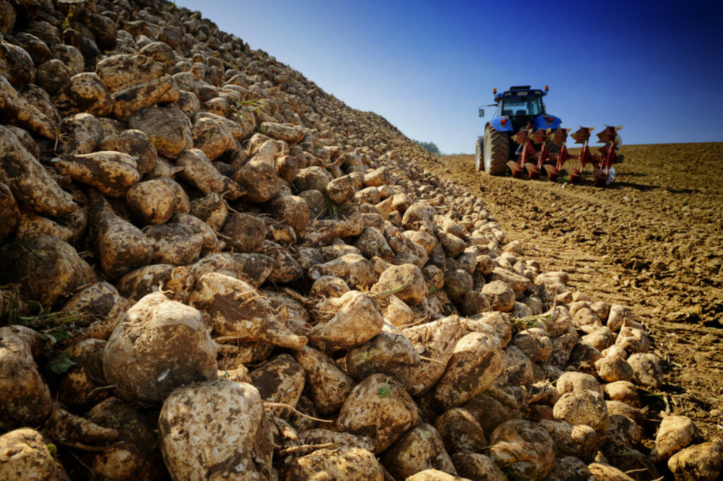 Zuckerrüben, http://www.shutterstock.com/de/pic-166173944/stock-photo-agricultural-vehicle-harvesting-sugar-beet.html , © (www.shutterstock.com) (01.07.2014)