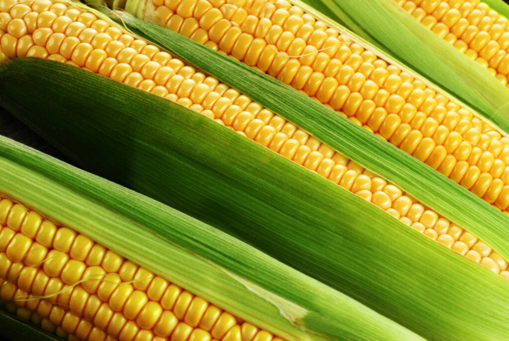 Mais, Rohstoff, http://www.shutterstock.com/de/pic-132971723/stock-photo-corn-cob-between-green-leaves.html , © (www.shutterstock.com) (04.07.2014)