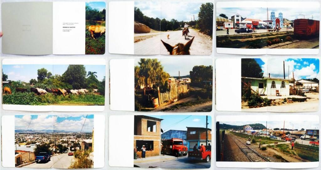 Koji Onaka - Horse & Cactus, Beispielseiten, sample spreads, Whitepress, 2013, http://josefchladek.com/book/koji_onaka_-_horse_cactus, © (c) josefchladek.com (06.07.2014)