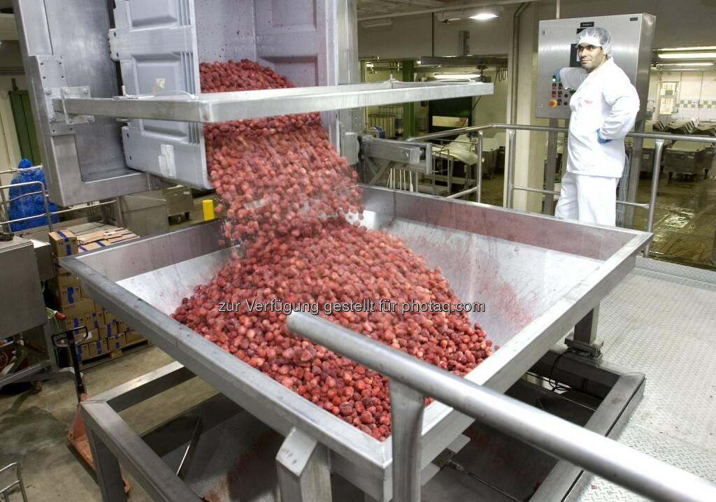 Herstellung Fruchtzubereitung (Bild: Agrana) (10.07.2014)