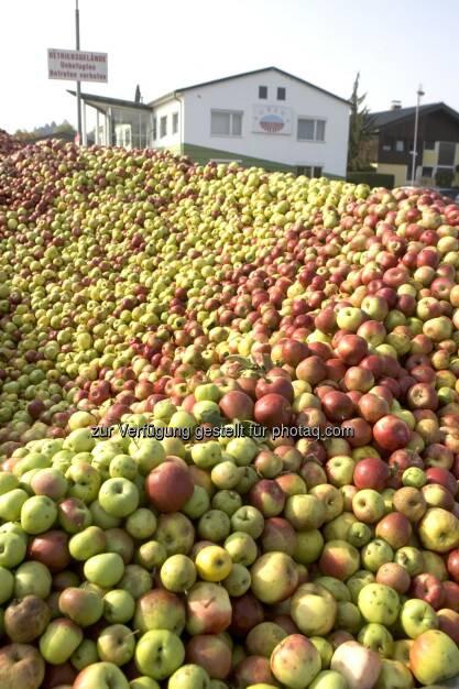 Fruchtzubereitungs- und Fruchtssaftkonzentratswerk Gleisdorf, Äpfel, Apfel, Berg (Bild: Agrana) (10.07.2014)