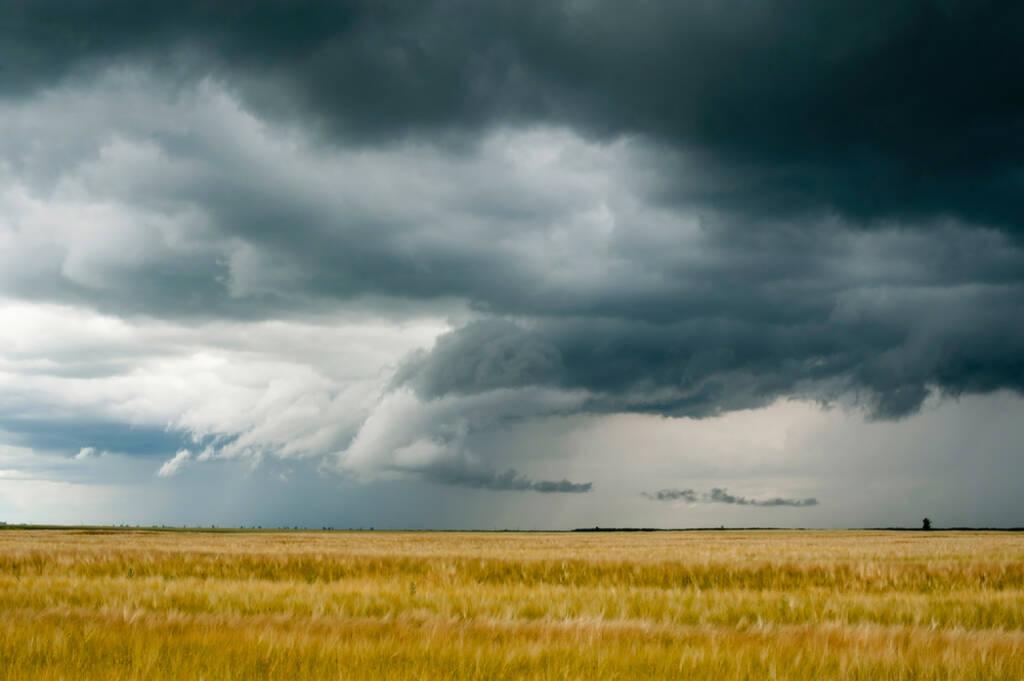 Wolken, dunkel, dunkle Wolken, Gewitter, Horizont, Feld, Weizen, Getreide, Schlechtwetter, Verdunklung, Sturm, http://www.shutterstock.com/de/pic-79450117/stock-photo-storm-dark-clouds-over-field.html  (15.07.2014)