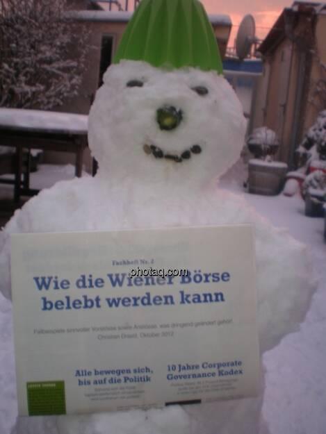 Der Schneemann mit dem Fachheft (14.01.2013)