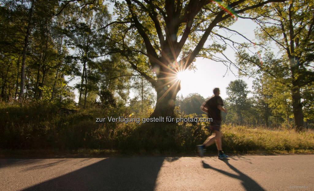 Läufer, http://www.sunshinemoments.at/, &copy; Georg Krewenka, <a href=