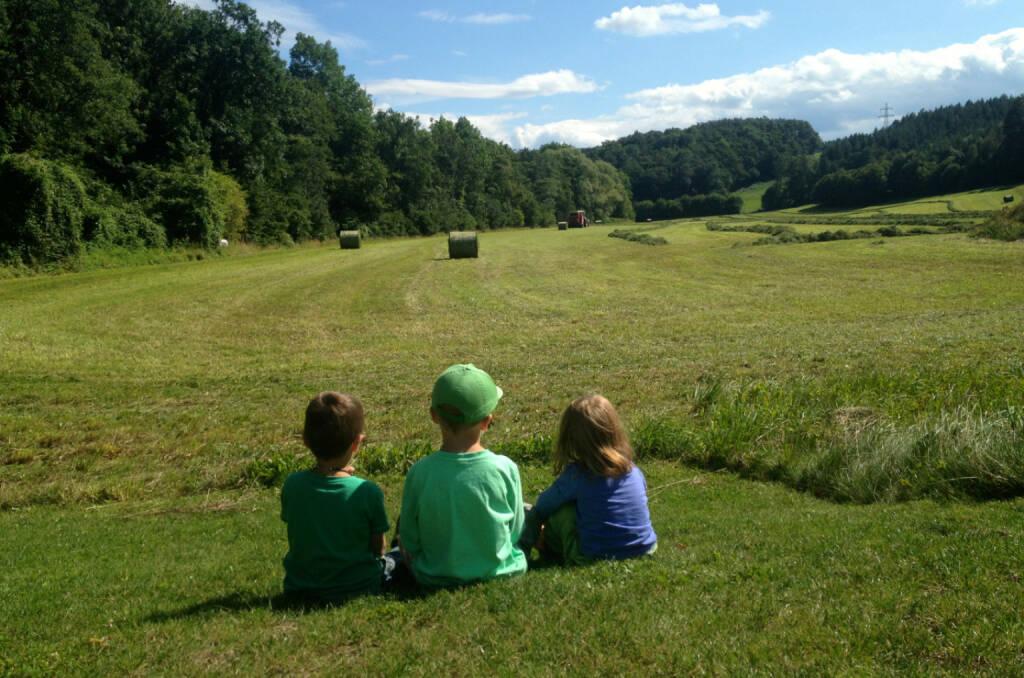 Landwirtschaft, Bauern, Ausblick, © diverse Handypics mit freundlicher Genehmigung von photaq.com-Freunden (18.08.2014)