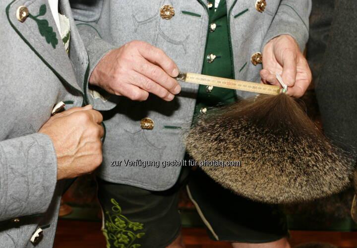 Gamsjagatage (vom 29. bis 31. August) mit Gamsbart Olympiade in Bad Goisern (Bild: Doris Dännhardt, Verein Gamsjagatage)