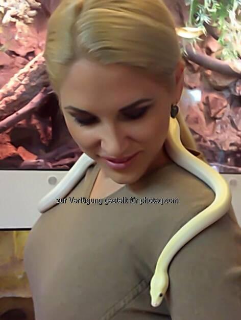 Christina Weidinger, GF Diabla Media Verlag: Lieber Schlange sein als in der Schlange stehen (c) Weidinger (23.01.2013)