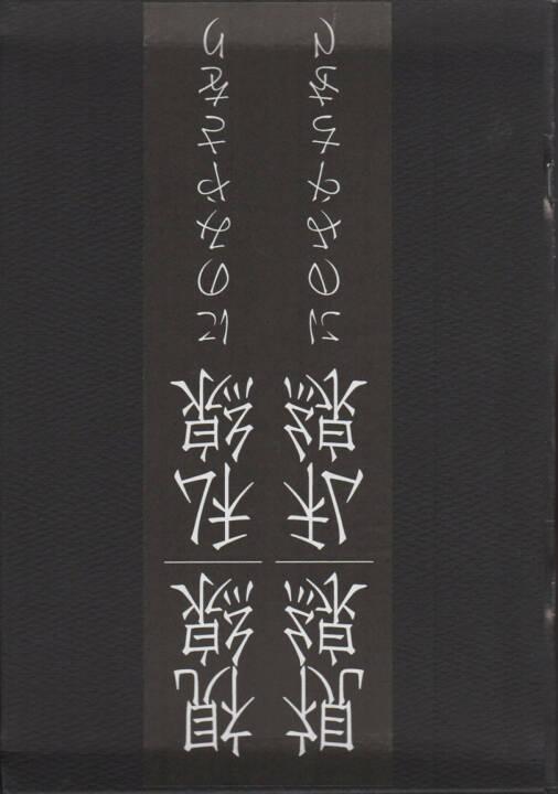 Saori Ninomiya - Visual Line/Private Line 視線/私線, Fuei-sha, 2014, Cover - http://josefchladek.com/book/saori_ninomiya_-_visual_lineprivate_line