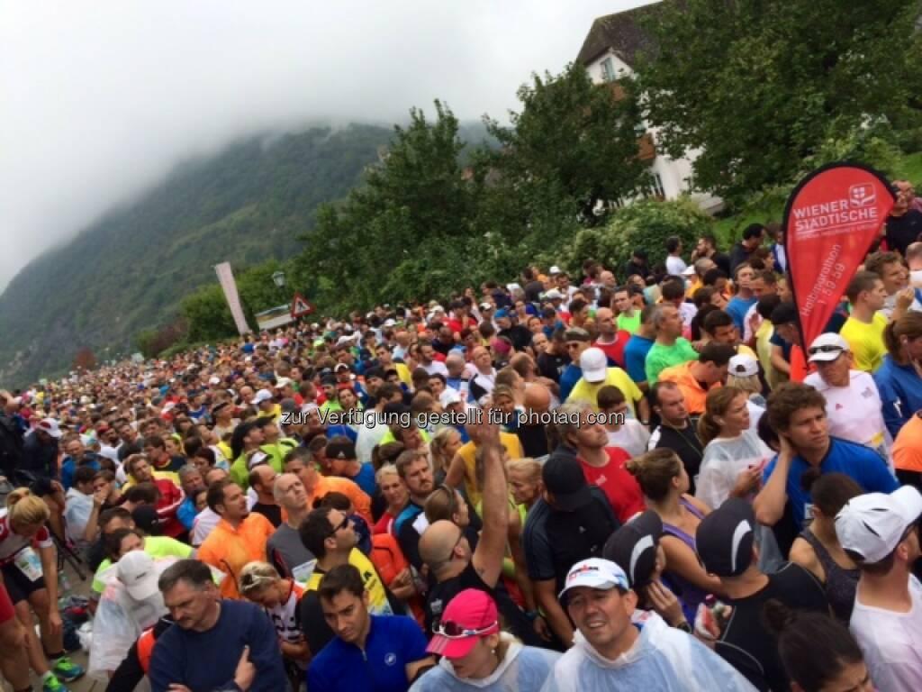 Wachau Marathon 2014, Start, © Milena Ioveva  (14.09.2014)