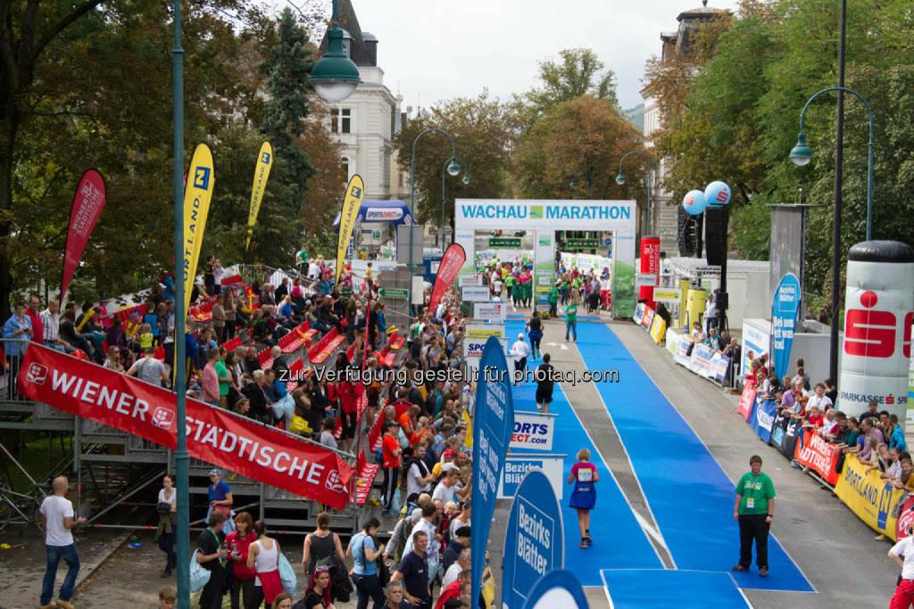 Zieleinlauf, Wachau Marathon 2014, © Milena Ioveva  (14.09.2014)