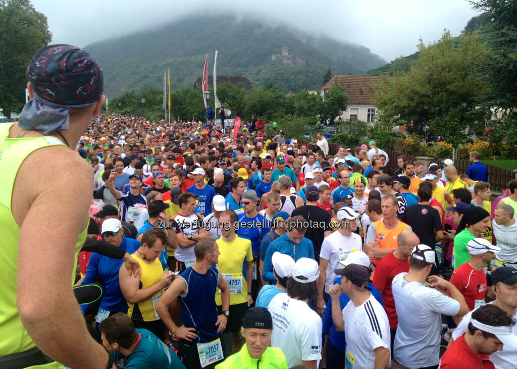 Start Wachau Halbamarathon in Spitz, © Milena Ioveva  (15.09.2014)