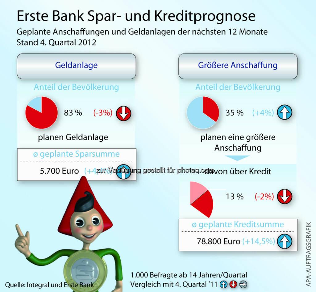 Österreicher: Geplante Anschaffungen und Geldanlagen der nächsten 12 Monate (c) Erste Bank / Aussendung (25.01.2013)