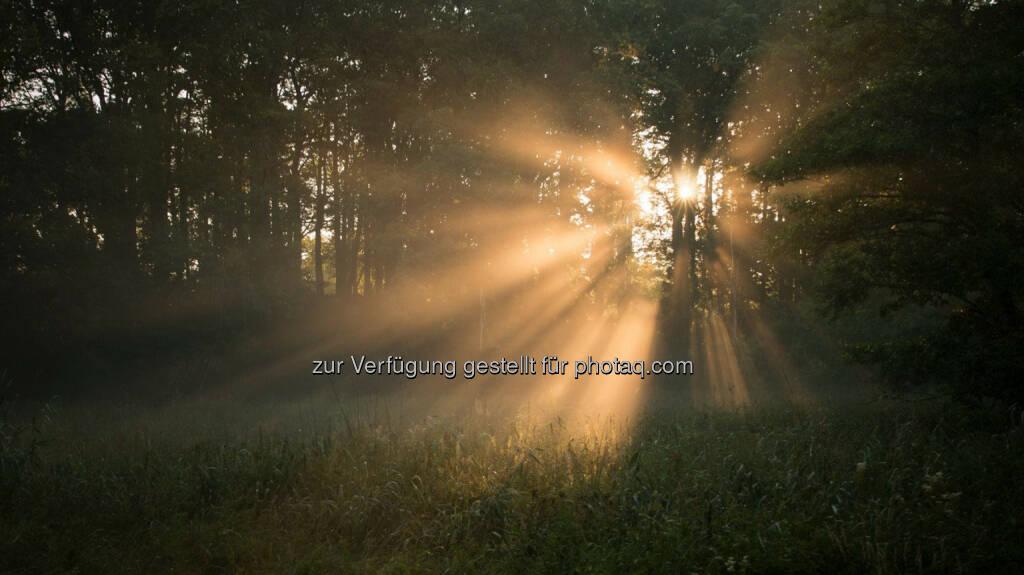 Sonnenaufgang, http://www.sunshinemoments.at/, &copy; Georg Krewenka, <a href=