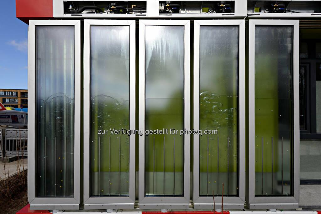 """Arup Deutschland GmbH mit """"SolarLeaf"""" Siegerprojekt in der Kategorie Applied Innovations © Colt, SSC, Arup (23.09.2014)"""