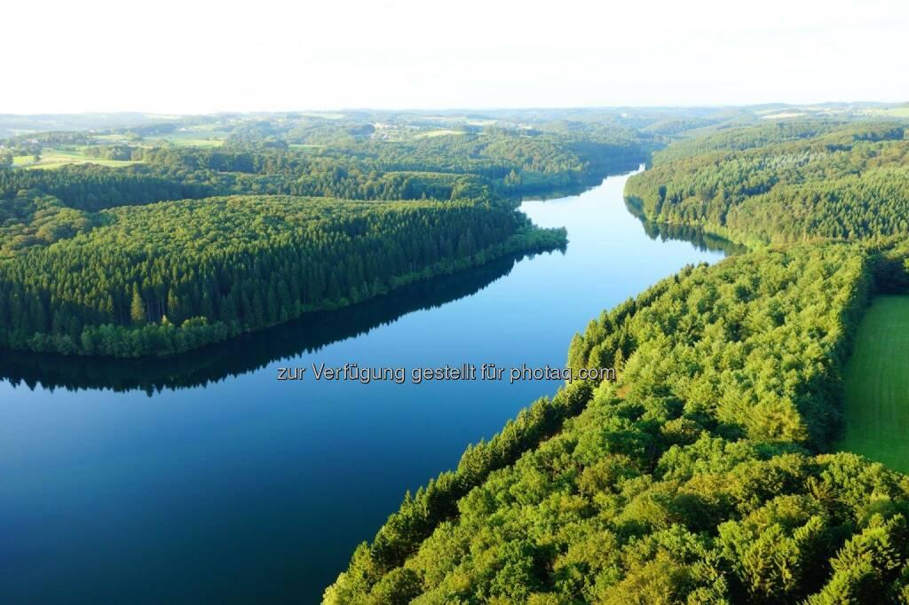 Wald Wasser (27.09.2014)