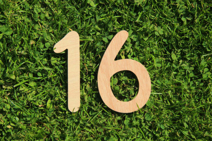 16, Sechzehn, http://www.shutterstock.com/de/pic-144992860/stock-photo-wooden-number-on-a-grass-and-clover-background.html