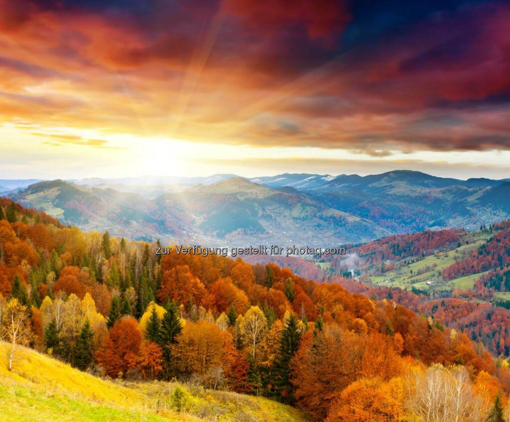 Herbst, © Dirk Herrmann (05.10.2014)