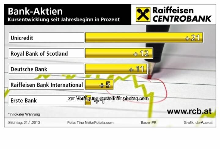 Bank-Aktien - Kursentwicklung 2013 (c) derAuer Grafik Buch Web