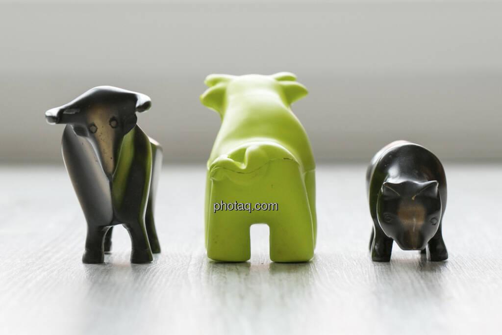 Bulle, Scoachy von hinten, Bär, © finanzmarktfoto.at/Martina Draper (30.01.2013)