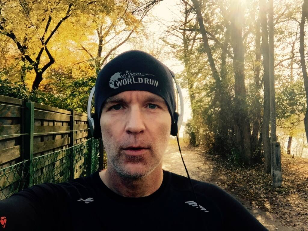 Herbst Lauf Runplugged Wings for Life (09.11.2014)